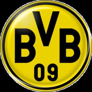 bvb3d